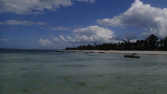 Baby Bush Lodge Zanzibar - Kiwengwa View : Kiwengwa Beach