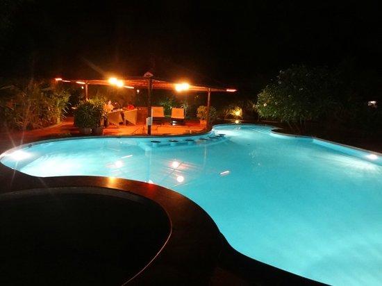 The Fern Gardenia Resort: Pool view at night