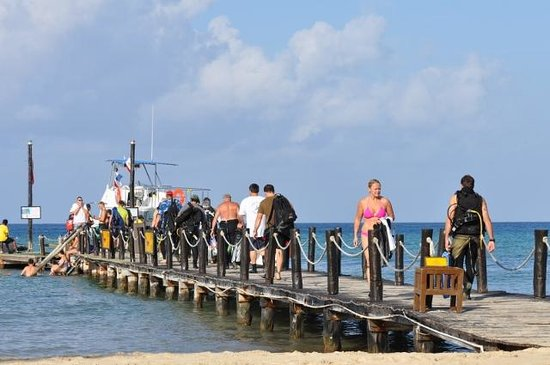 Iberostar Cozumel : a few of the divers going on one of the boats