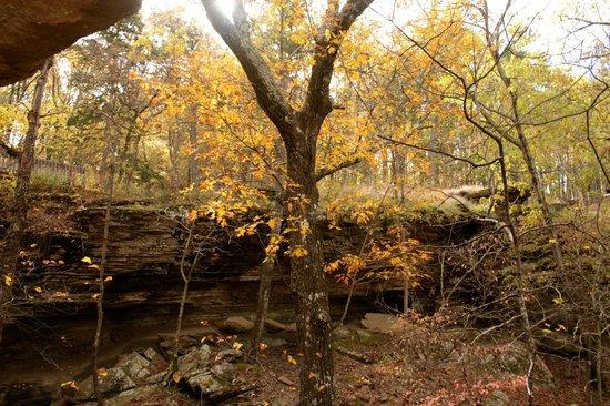 ... - Picture of Heavener Runestone State Park, Heavener - TripAdvisor