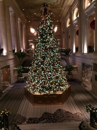 hilton chicago beautiful lobby area christmas tree - Christmas Tree In Chicago