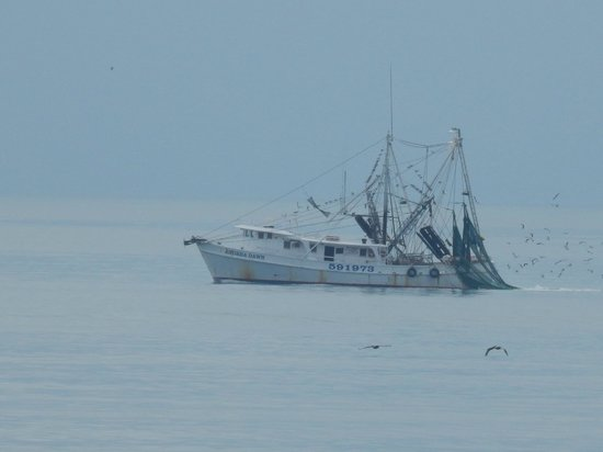 Holden Beach : The view of a trawler from our front deck!!  11-29-13