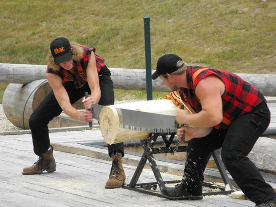 2 Person Saw : Man saw picture of dells lumberjack show wisconsin