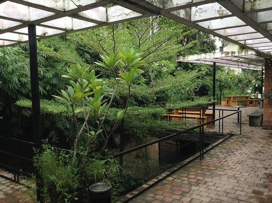 Izumi: Garden