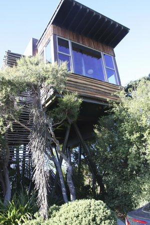 Hapuku Lodge: Tree House 1