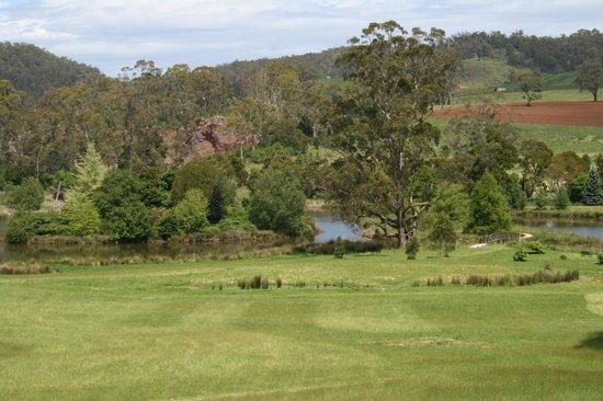 The Tasmanian Arboretum: Looking down towards the water