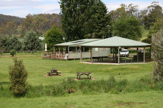 The Tasmanian Arboretum: The kiosk