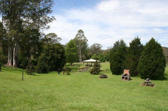 The Tasmanian Arboretum: Arboretum grounds