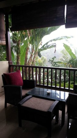 Bebek Tepi Sawah Villas & Spa: view from the balcony