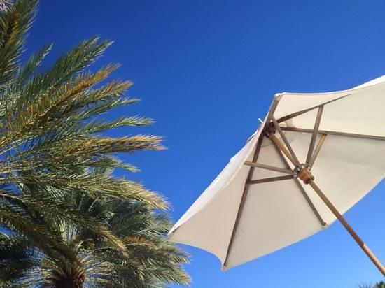 The Ritz-Carlton, Grand Cayman: Perfect day.