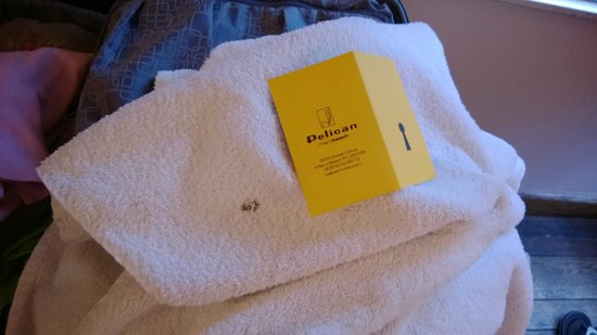 Pelican Hotel : There is a hole on the shower towel.