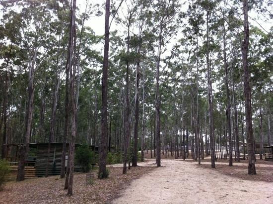 Lakes Entrance Log Cabins
