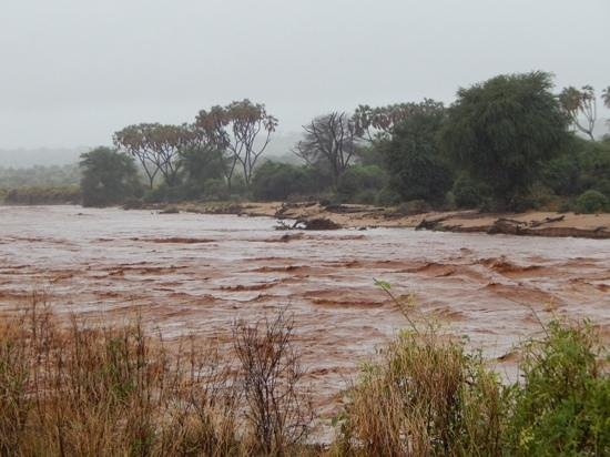 Sarova Shaba Game Lodge: the river once it has risen