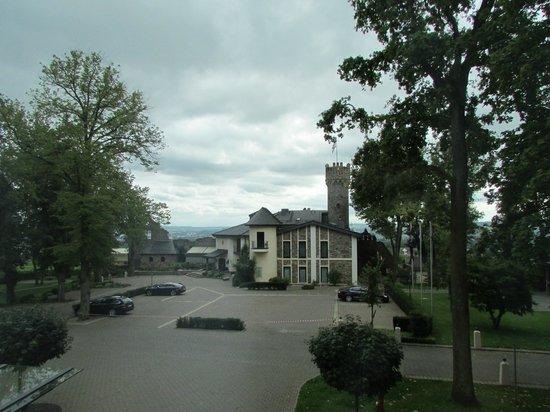 Relais & Châteaux Hotel Burg Schwarzenstein: Room view