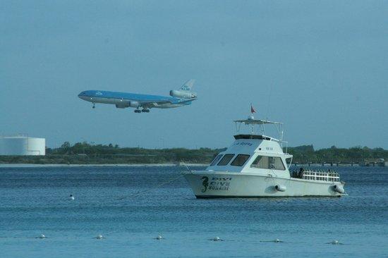 Divi Flamingo Beach Resort and Casino: De boten van de duikschool