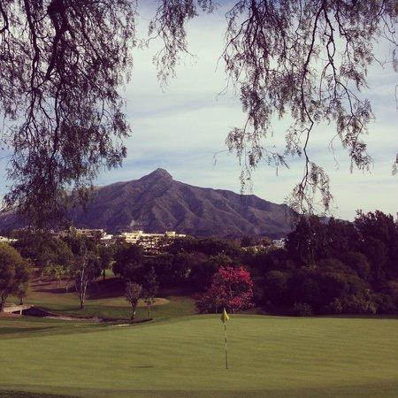 Real Club de Golf Las Brisas: Green #4