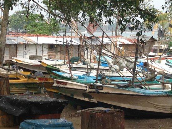 Templeberg Villa: Fishing boats at Galle