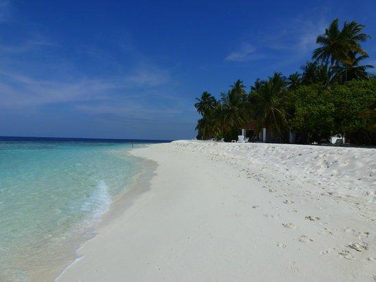Diamonds Thudufushi: A Typical Scene