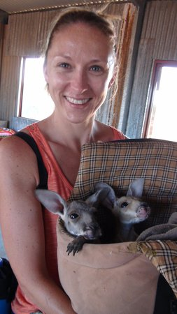 The Kangaroo Sanctuary: Me & the baby roos