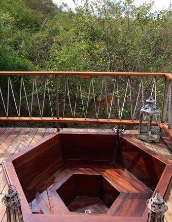 Mara Bushtops : The resident bushbuck Oscar right by the hot tub!