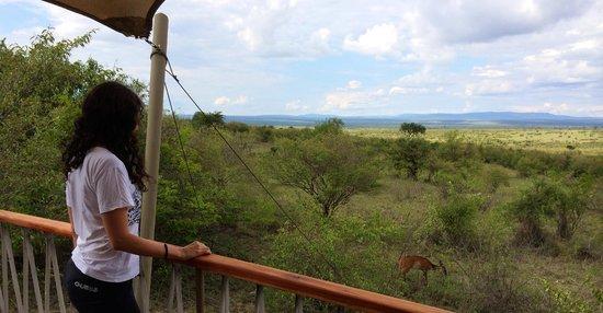 Mara Bushtops : Watching the animals