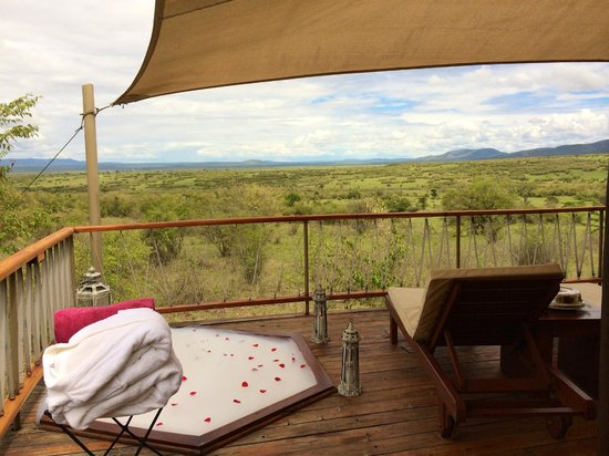 Mara Bushtops: Gazing out at zebra from the hot tub