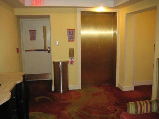 Residence Inn by Marriott St. Petersburg Treasure Island : Elevator Lobby