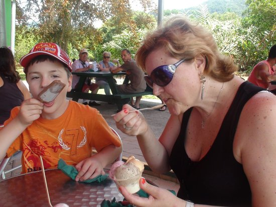 Cape Trib Exotic Fruit Farm: Yummy ice-cream