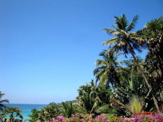 The Surin Phuket: View from the breakfast terrace
