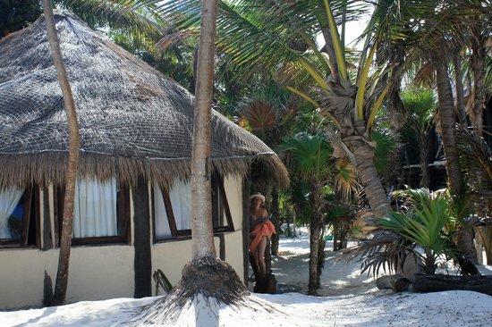 Ixchel Playa & Cabanas: Cabaña Albatros