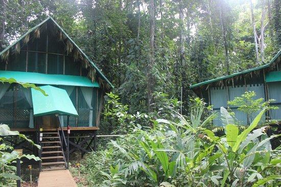 Almonds and Corals Hotel: Habitación