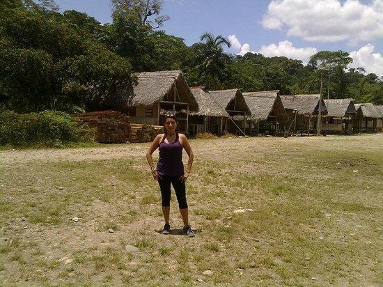 Isla Ecologica Mariana Miller Lodge: Naturaleza viva :)