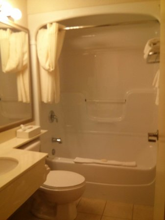 Rodeway Inn Champlain Waterfront: Standard sized bathroom with nice hot shower!