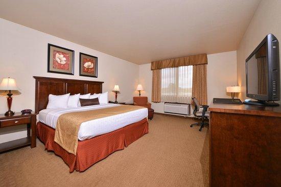BEST WESTERN PLUS Campus Inn: King Bed