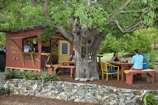 Island Roots Charters: Vie's Snack Shack