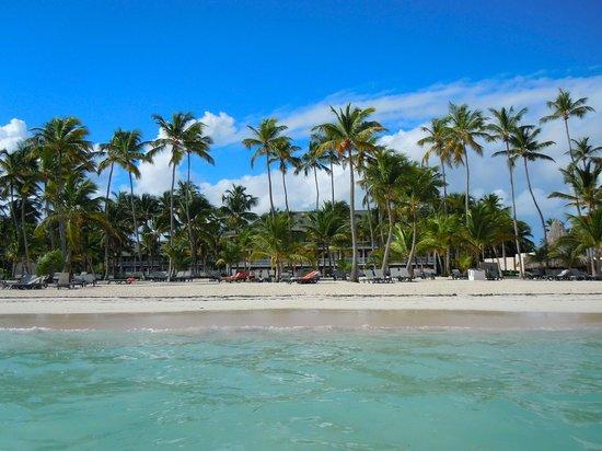 Barcelo Bavaro Beach - Adults Only: Beautiful beach