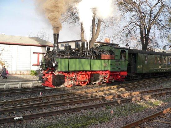 Harzer Schmalspurbahnen: HISTORIC TRAIN (1896) - SPECIAL