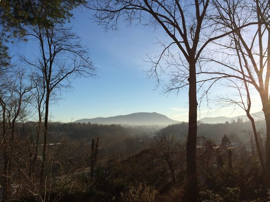 Biltmore Village Inn: Cold Morning View