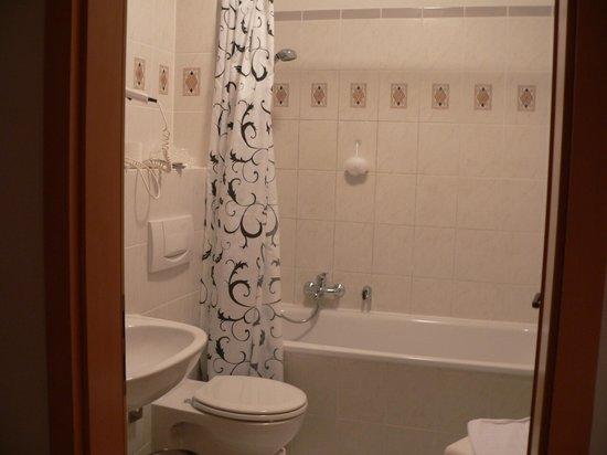 Altwernigeroeder Apparthotel: Bathroom