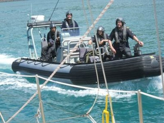 Akaroa Sailing Cruises : NZ Navy approaches us