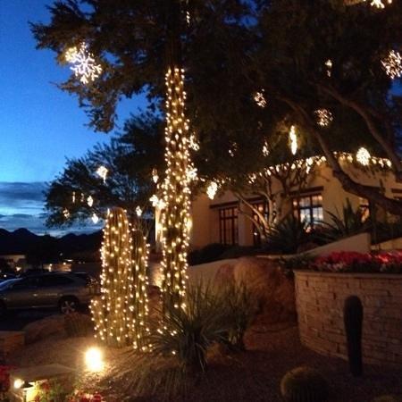 JW Marriott Scottsdale Camelback Inn Resort & Spa: Camelback Inn-illuminated Cactii