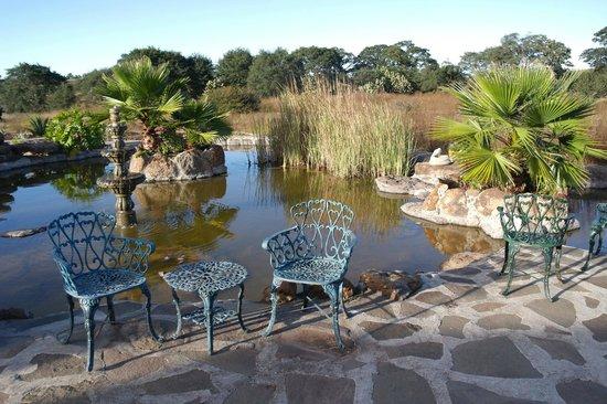 Rancho Las Cascadas - All Inclusive Boutique Resort : Surroundings of the ranch/hotel