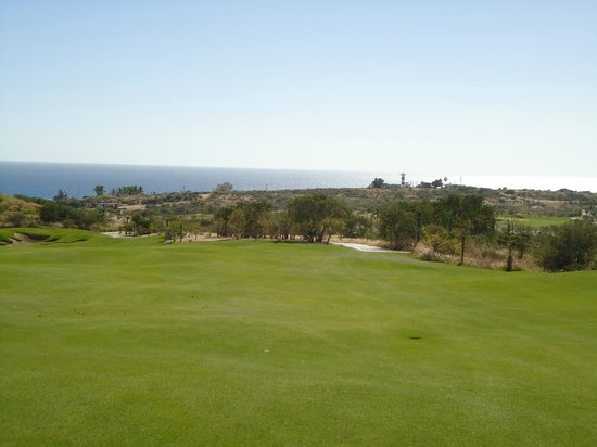 Puerto Los Cabos Golf Club: Another beautiful view of the golf course