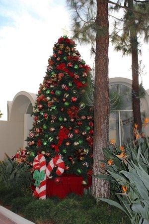 Howard Johnson Anaheim Hotel and Water Playground : Christmas Tree