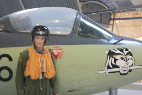 Malta Aviation Museum: Sea Hawk and 'Pilot'