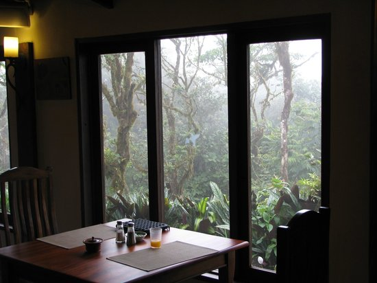 Villa Blanca Cloud Forest Hotel and Nature Reserve: View from the restaurant at breakfast