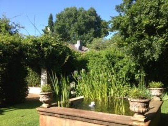 Village Green Guest House: Bassin dans le jardin