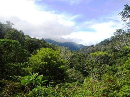 Savegre Hotel, Natural Reserve & Spa: San Gerardo de Dota valley