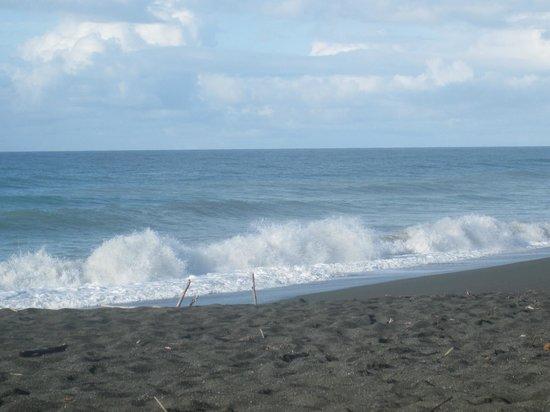 Finca Exotica Ecolodge: playa