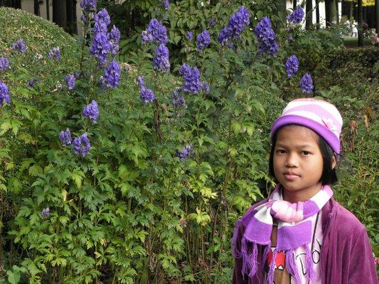 In the Rivierenhof park (Fairy-tale garden)